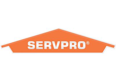ServoPro